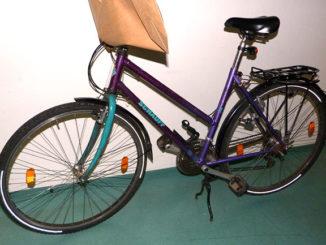 fahrrad_dreisam