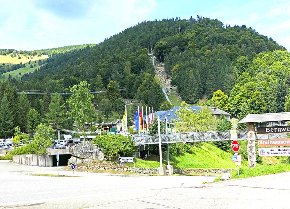 Steinwasen