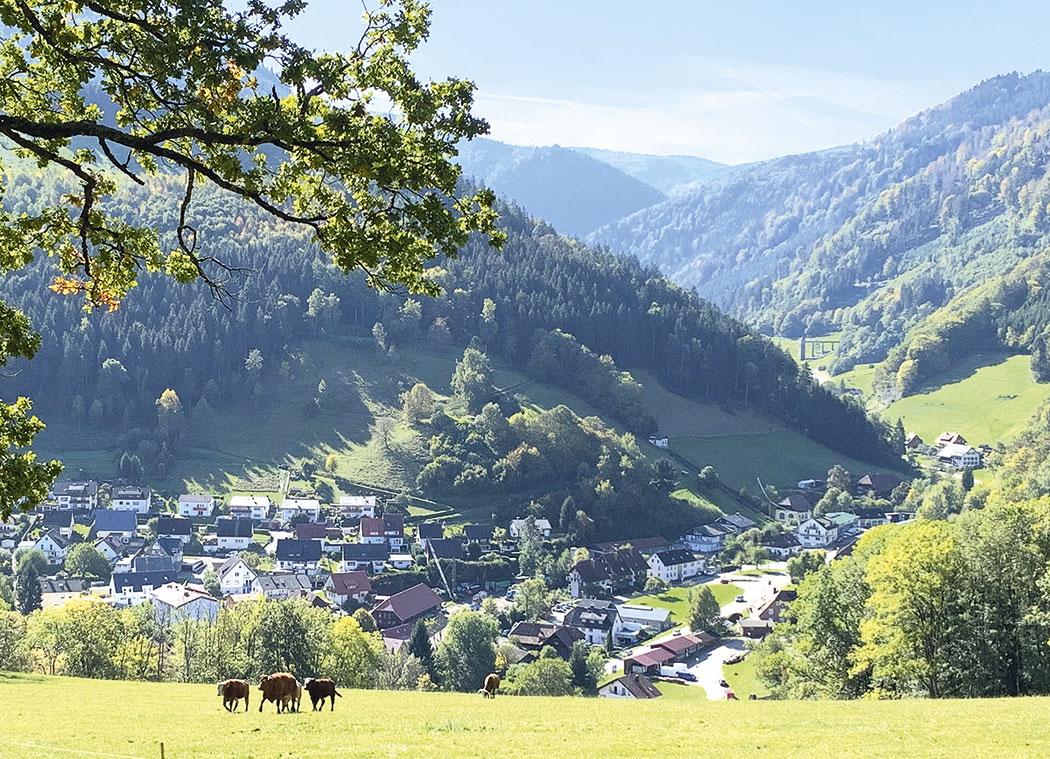 Oberried Hintertal 2019